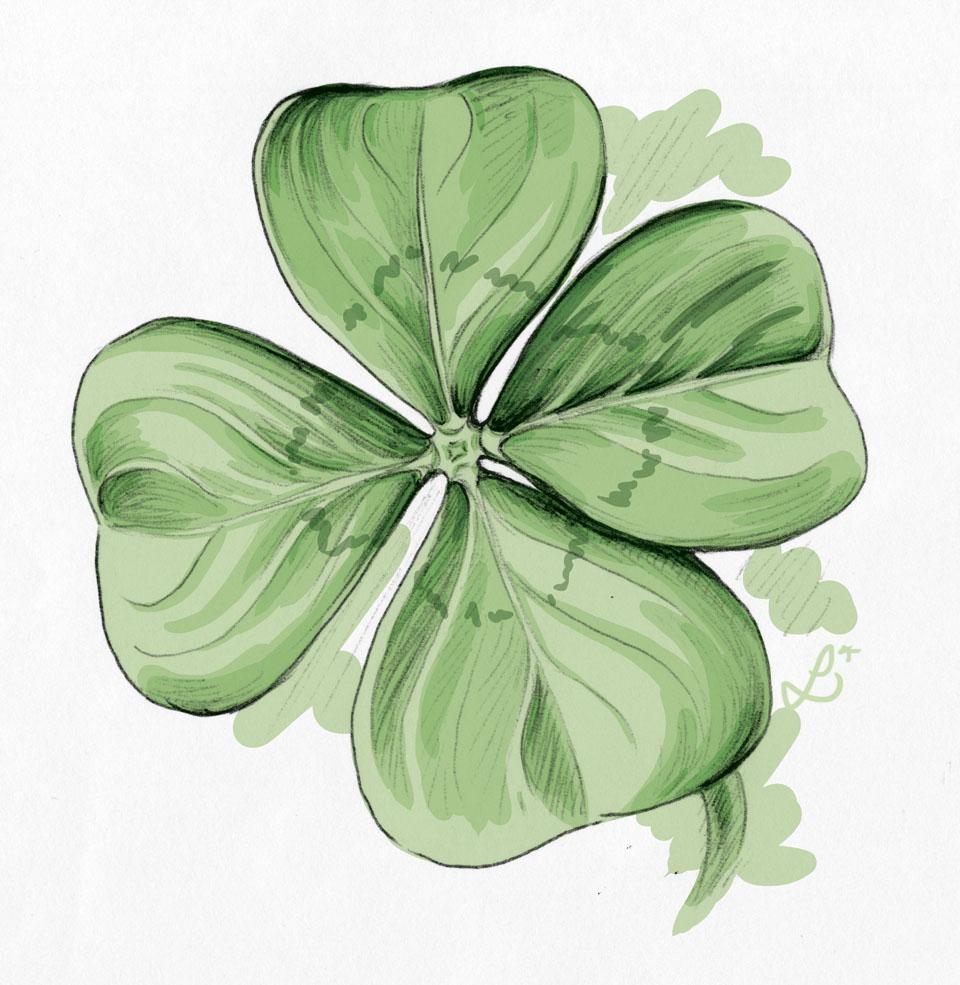 Vier Blätter nochmal in größer mit anderer Zeichnung im Grün.