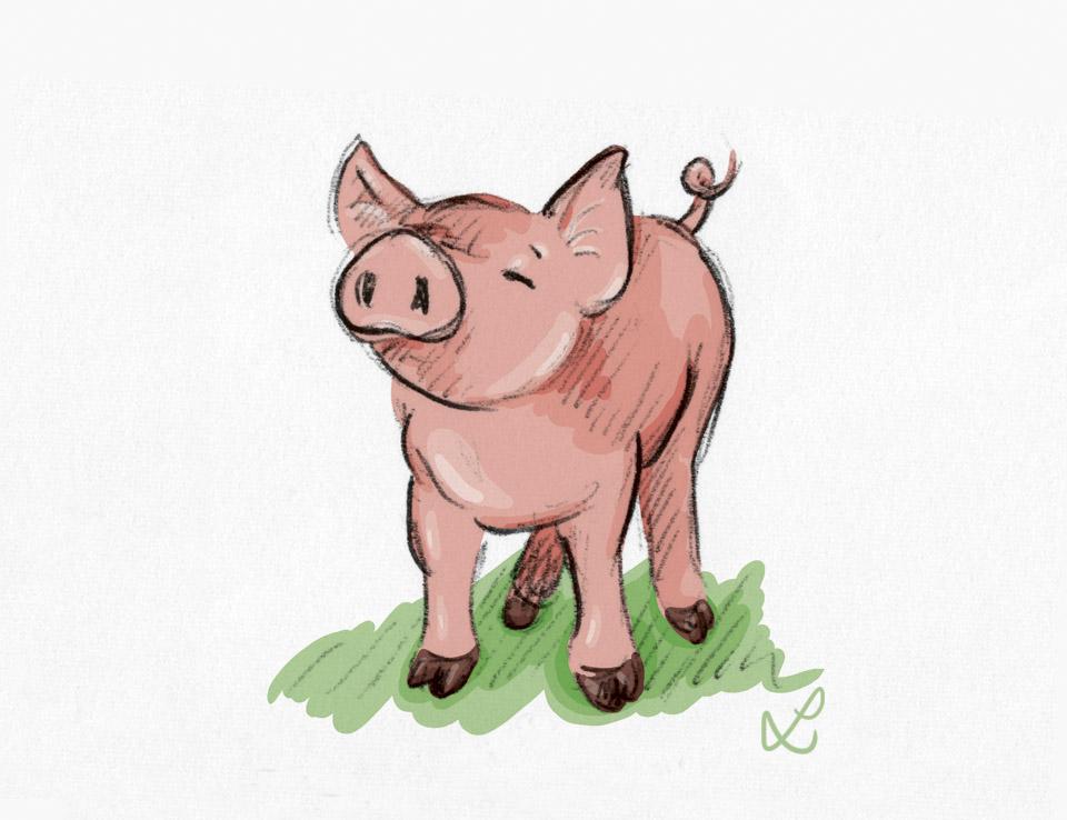 Ein kleines schnupperndes Glücksschwein - Coloration in Photoshop