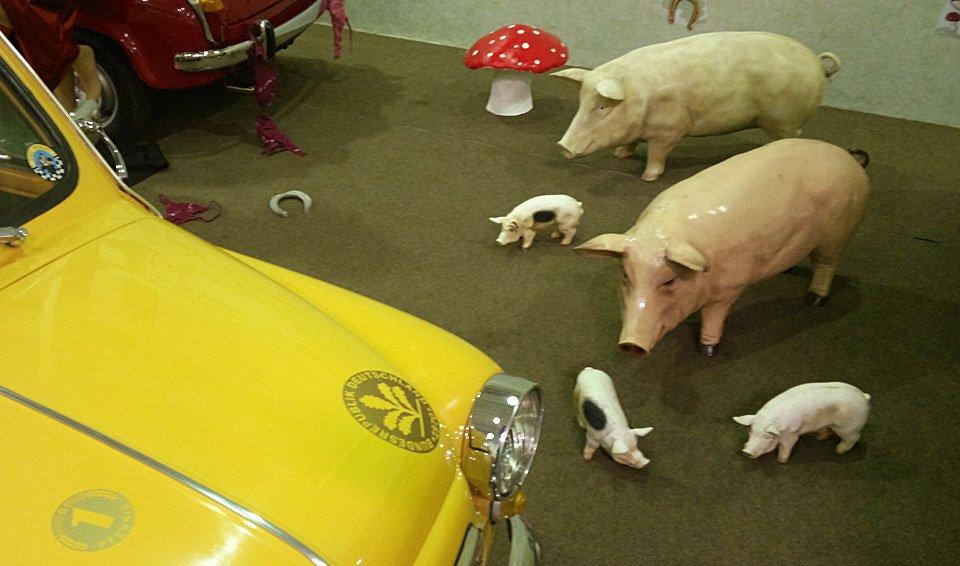Außerdem eine Familie Glücksschweine.