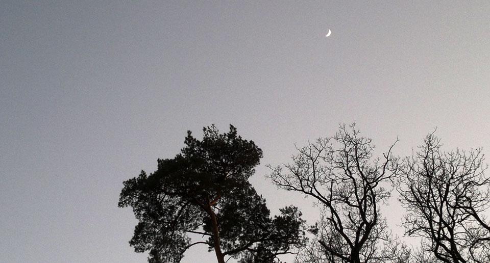Und zu guter letzt: Mein Freund, der Mond.