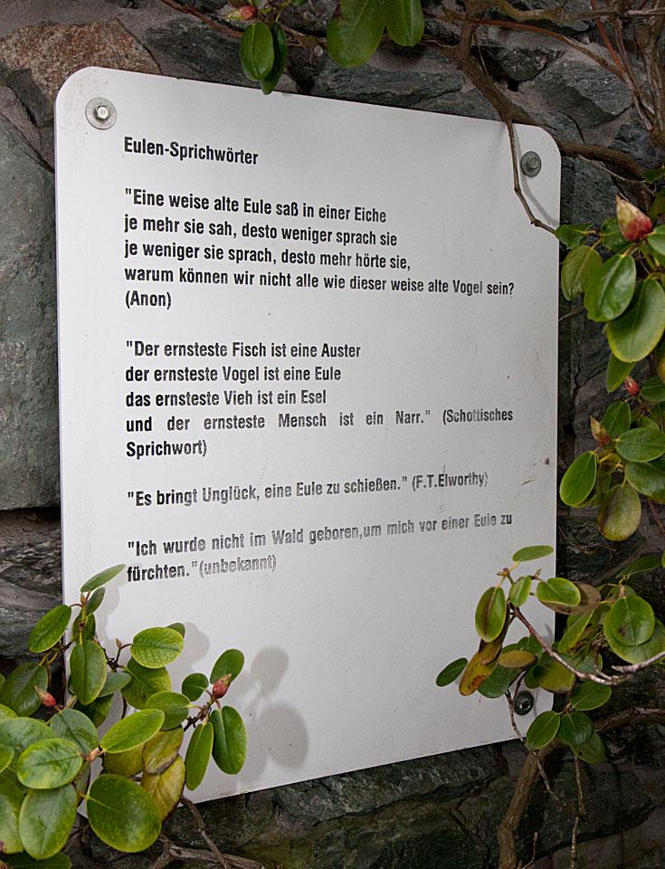 Eulen-Sprichwörter von Anon, F.T. Elworthy und aus Schottland.