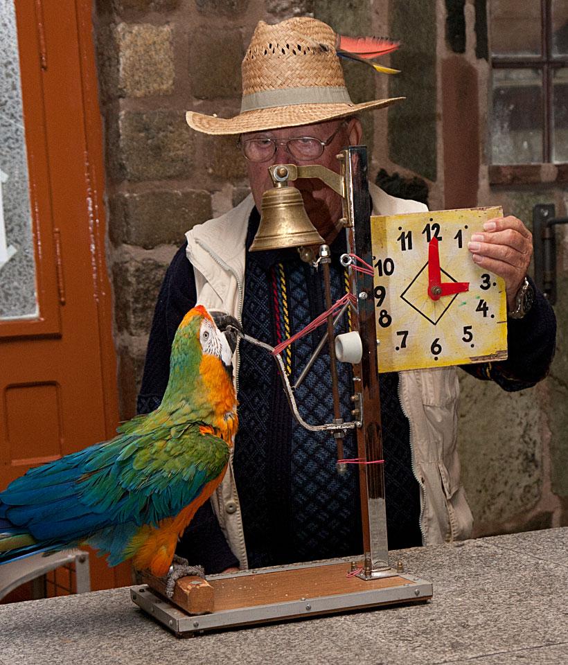 Niki kann aber auch Zählen, Rechnen und die Uhr lesen - Das Ergebnis wurde geläutet.