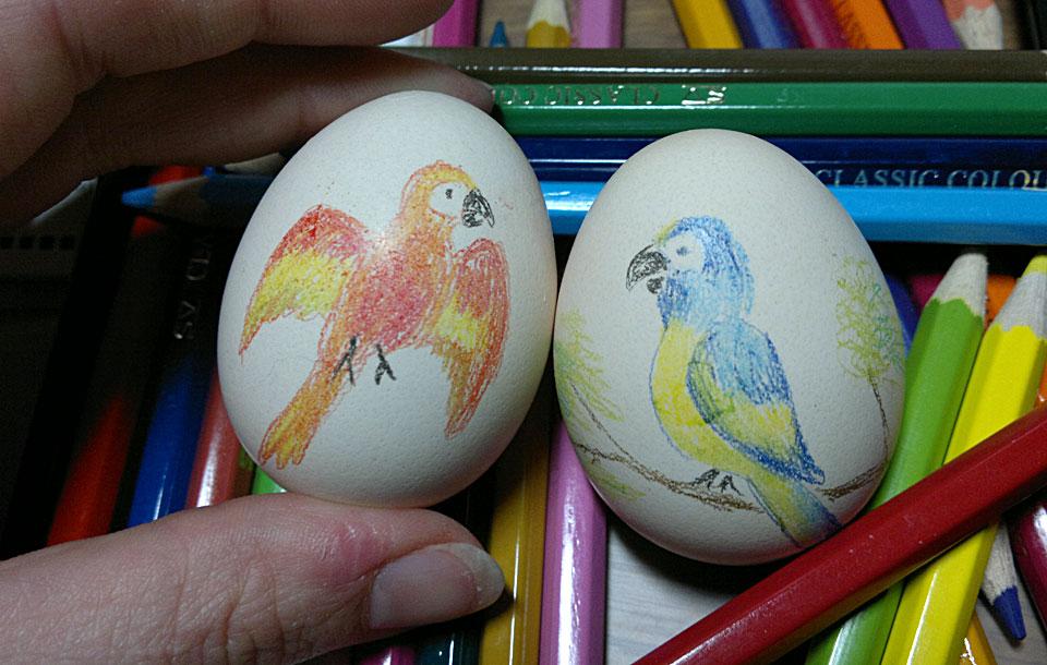 Zwei Papageien für das Osternest.