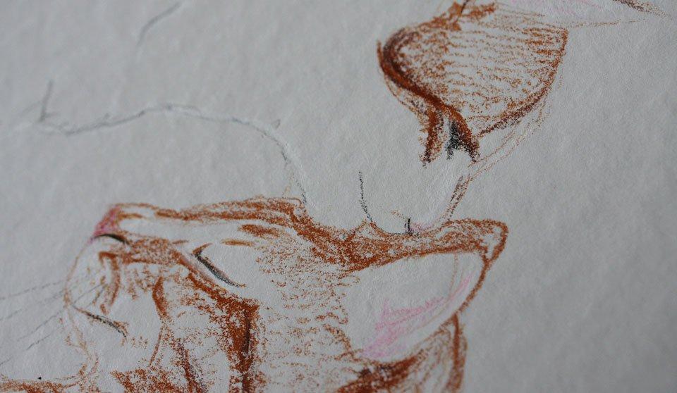 Es gibt auch eine weiße Kreide für Flixis Fell.