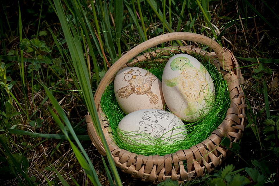 Alle zusammen in einem kleinen Körbchen - Frohe Ostern!