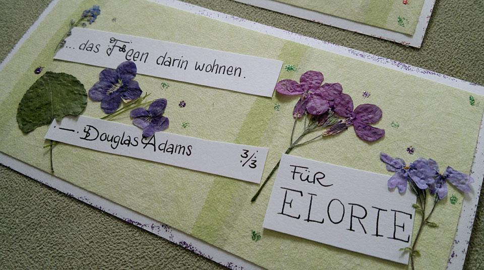 Veilchen für Elorie