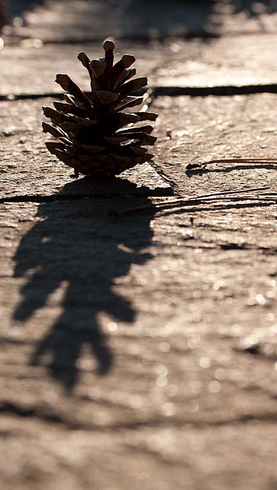 Wirft einen langen Schatten.