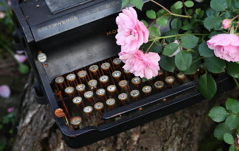 Vielleicht ein Motiv für den nächsten Kalender? – Alte Schreibmaschine im Rosengarten.