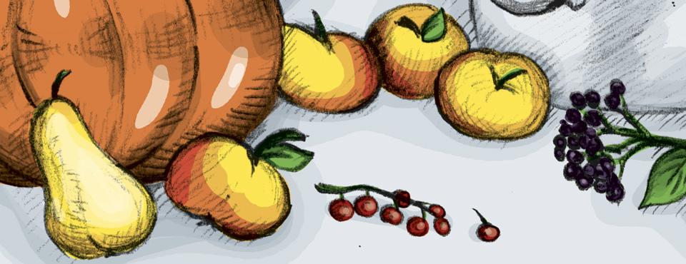 Aus vielen verschiedenen Früchten kann man Gelee oder Marmelade kochen – Das Richtige für Süß-Schnäbel wie Kröt und Schuhuu.