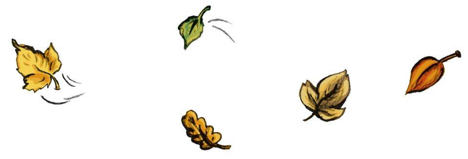 Die letzten bunten Blätter fliegen durch die Luft