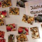 Allerhand zu tun: Das Kürbis-Memory