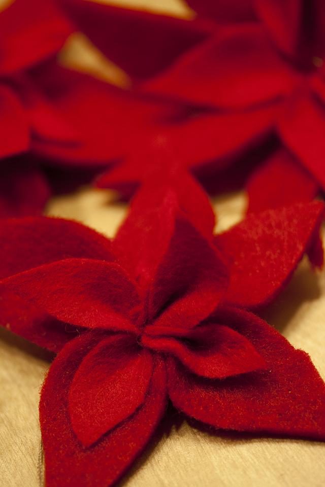 Rote Weihnachtssterne aus Filz.