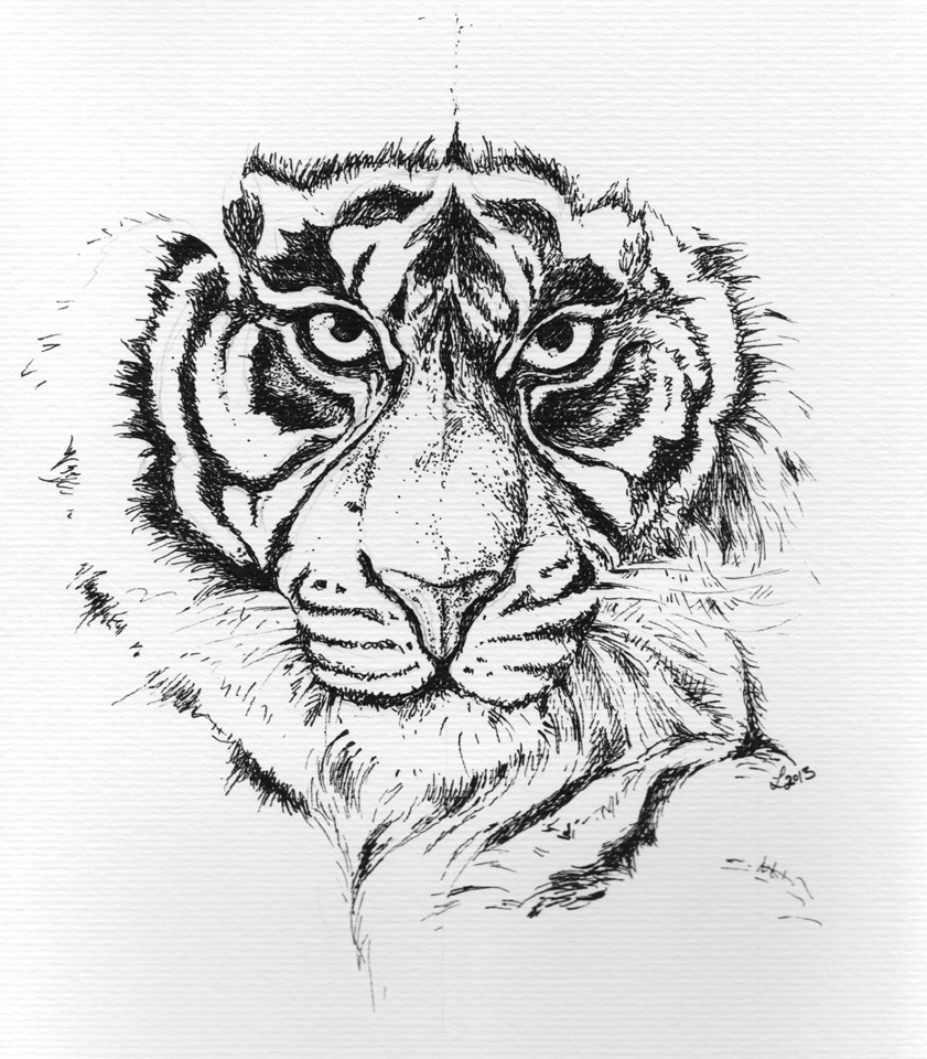 Fast fertig –Zeichnung mit Tuschestiften aus vielen kleinen Einzelstrichen und Punkten..