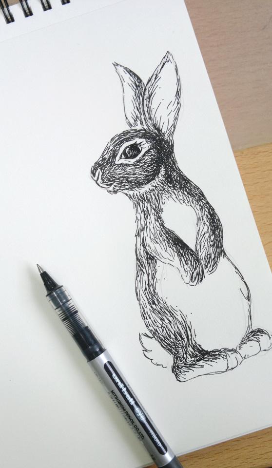 Hase Nummer 1 gezeichnet mit Tuschestift.