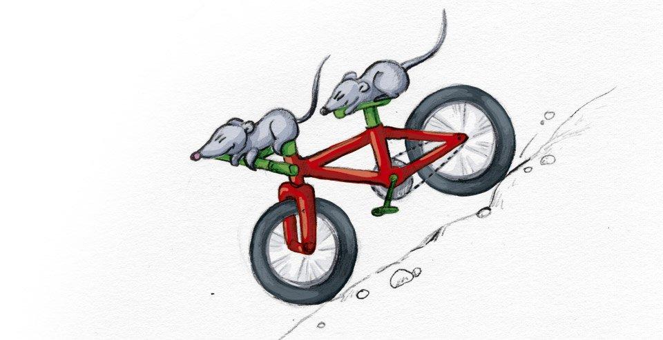 Sausen geschwind den Berg hinab – Bimbo und Sambo auf dem roten Mountainbike!