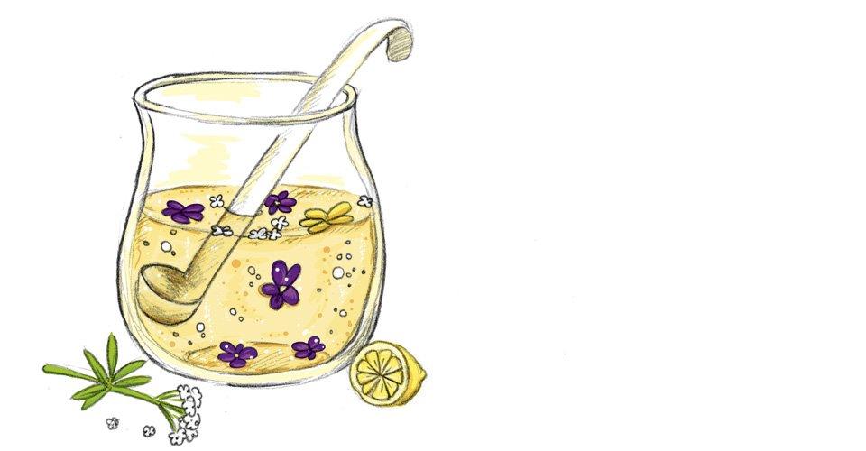 Leckere frische Bowle mit Blüten und Kräutern.