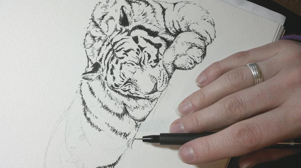 Schlafender Tiger mit Tusche.