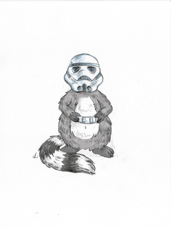 Der Waschbär als Storm Trooper.