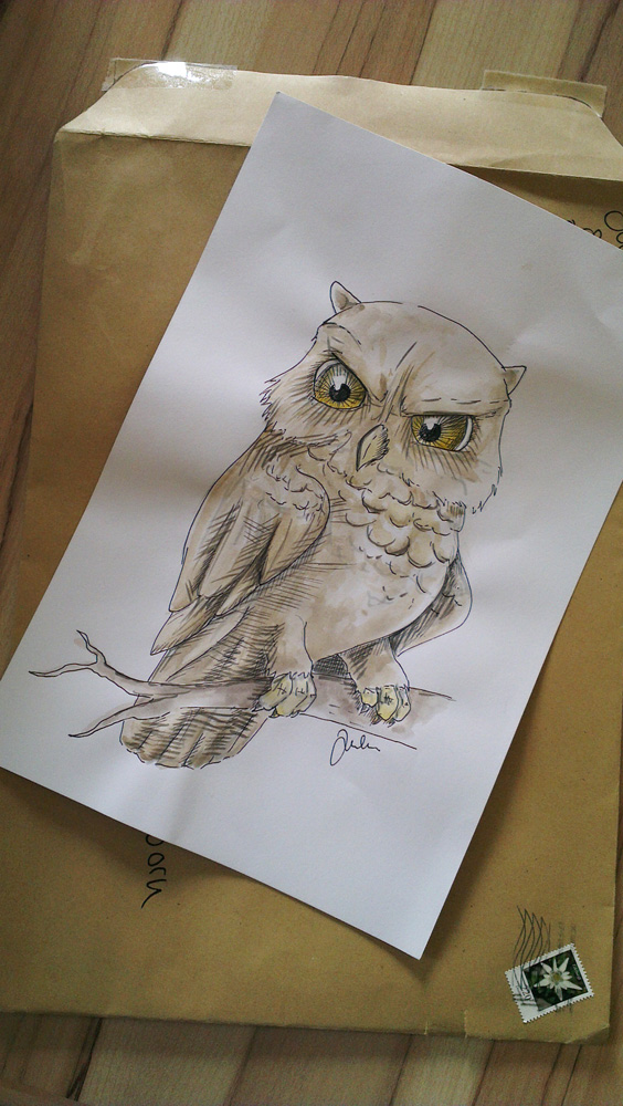 Grumpy Owl von Julia.