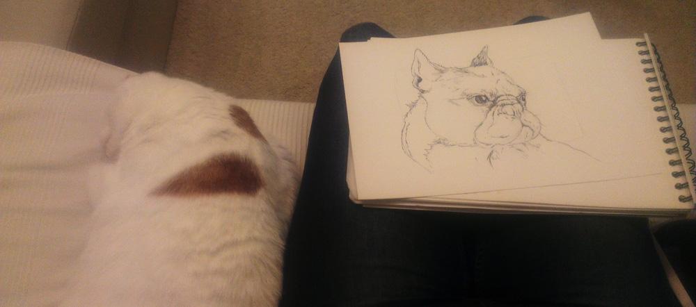 Mit Tusche und Katze auf dem Sofa.