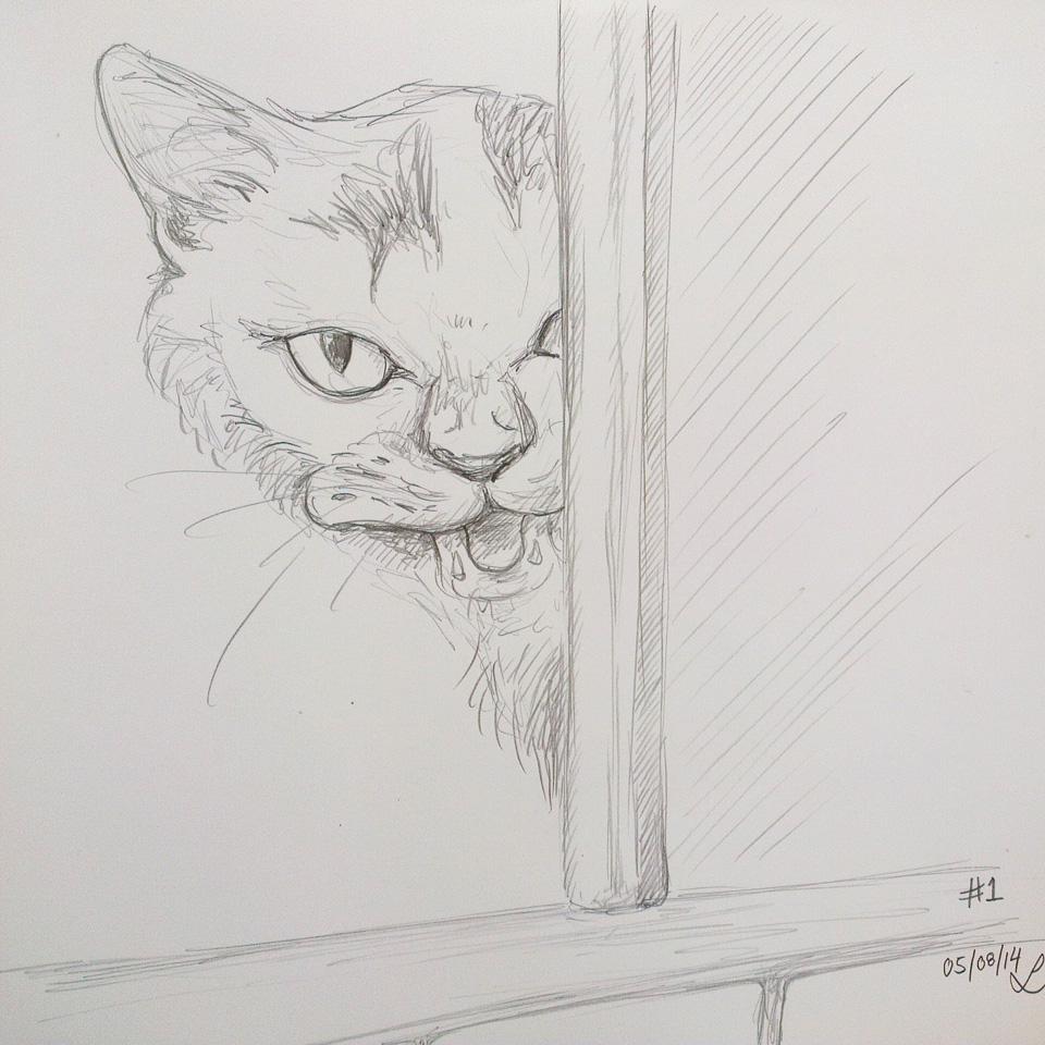 Meow! – machts in der Dusche.