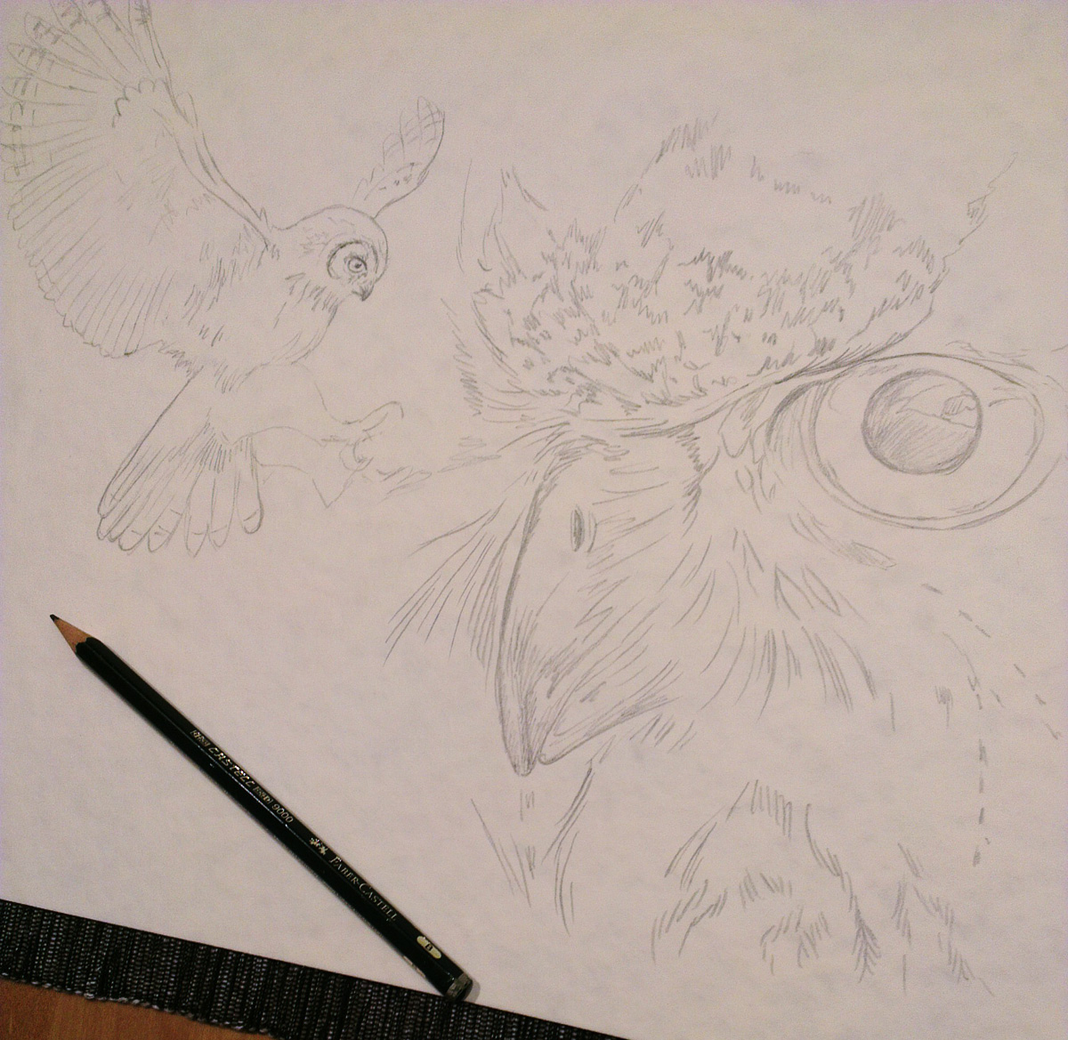 Bleistiftskizze auf dem Aquarellpapier.