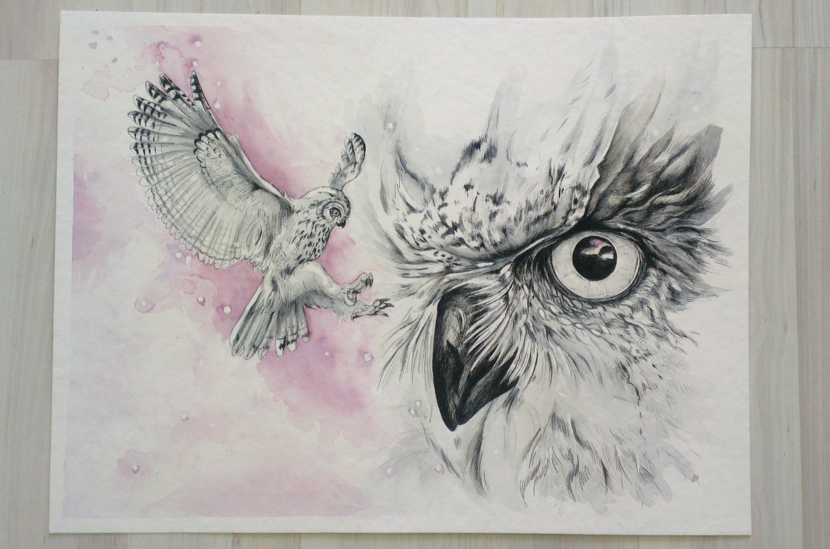 Fertig: Vögel der Nacht