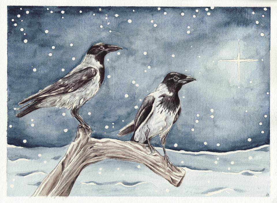 Zwei Nebelkrähen im Schneegestöber.