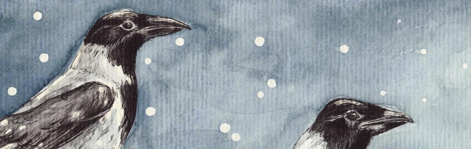 Die Vogelköpfe im Detail.
