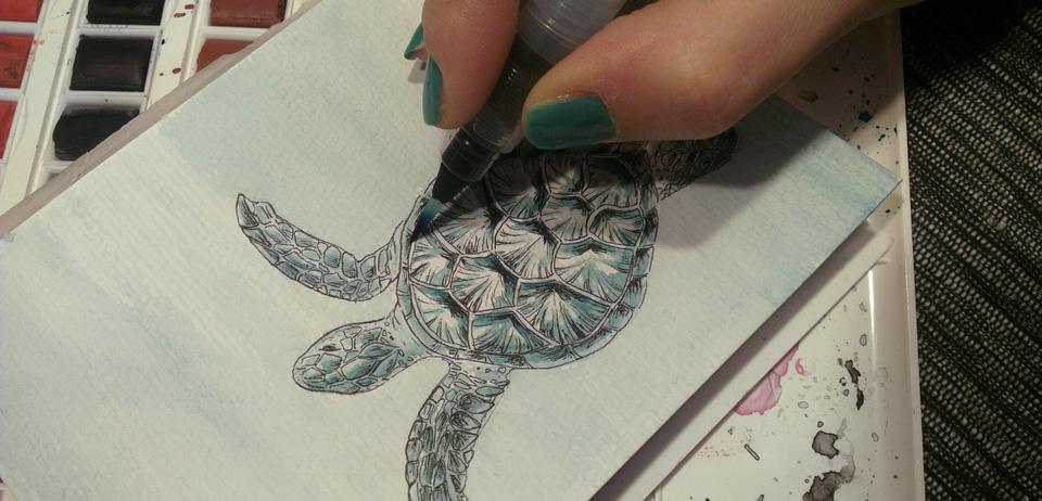 Ein erstes bisschen Farbe für Schildkröte und Hintergrund.