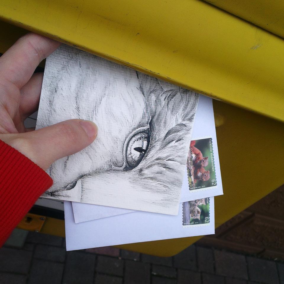 Und nun: Ab mit der Katzen-Post!