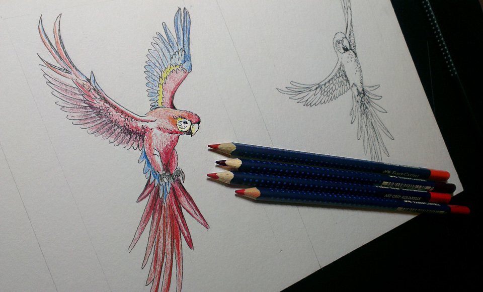 Colorieren mit Aquarell-Farbstiften.