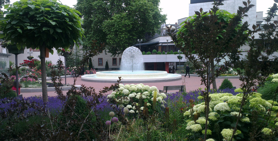 Der Serenadenhof: Wirklich schön dort mit den vielen Blumen, die um die Wette blühen.