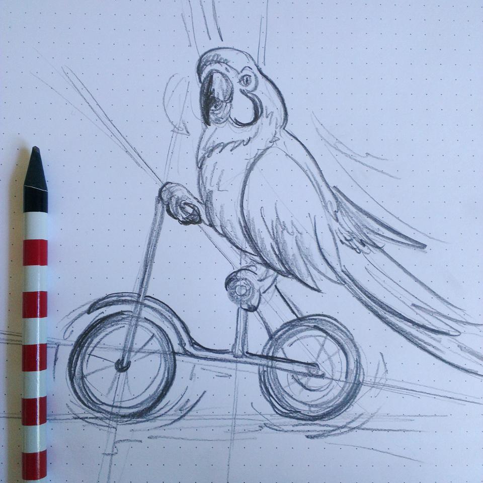 Vorskizze mit Bleistift und vielen Hilfslinien: Ein Ara auf dem Rad!