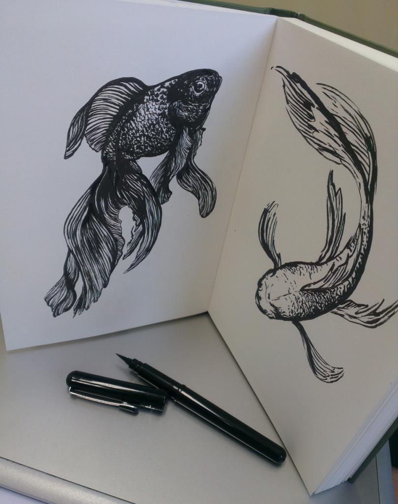 Ergebnis nach zwei Mittagspausen - zwei Goldfische.