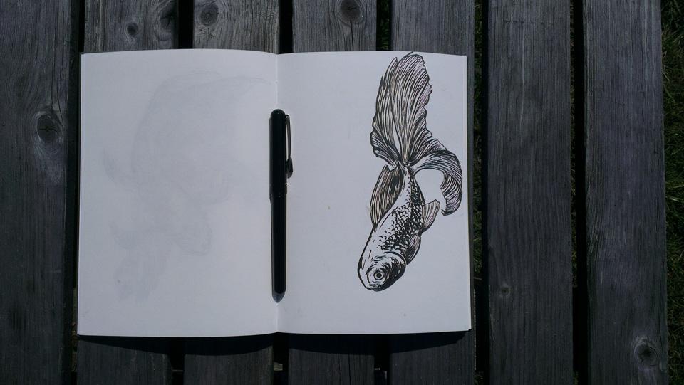 Das Bamboo Skizzenbuch und der Pentel Pocket Brush.