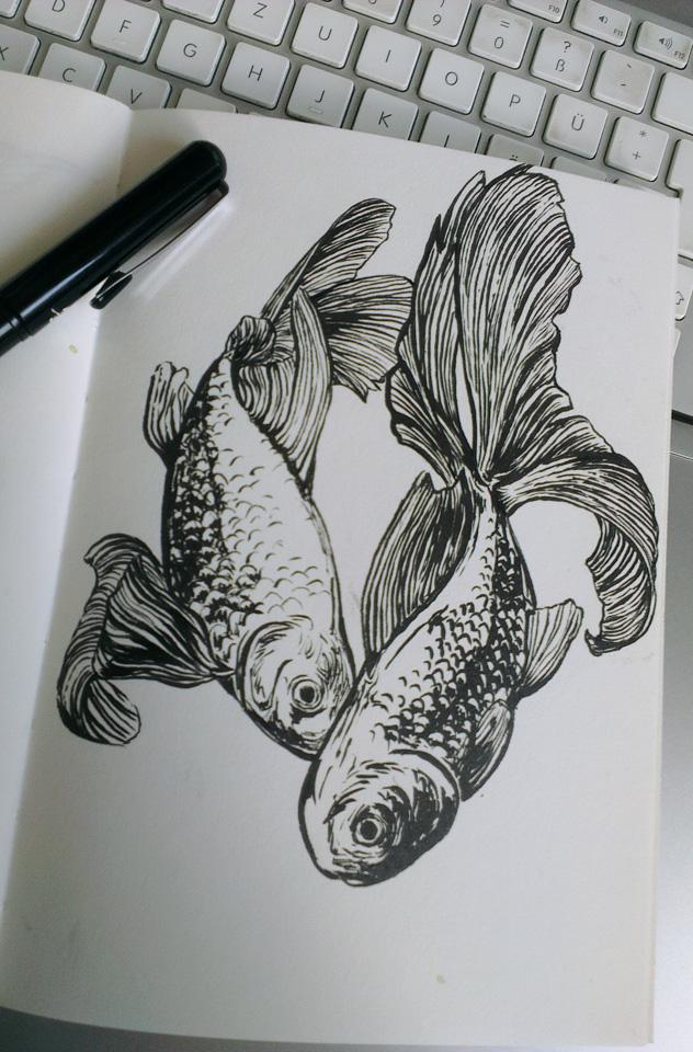 Zwei Goldfische.