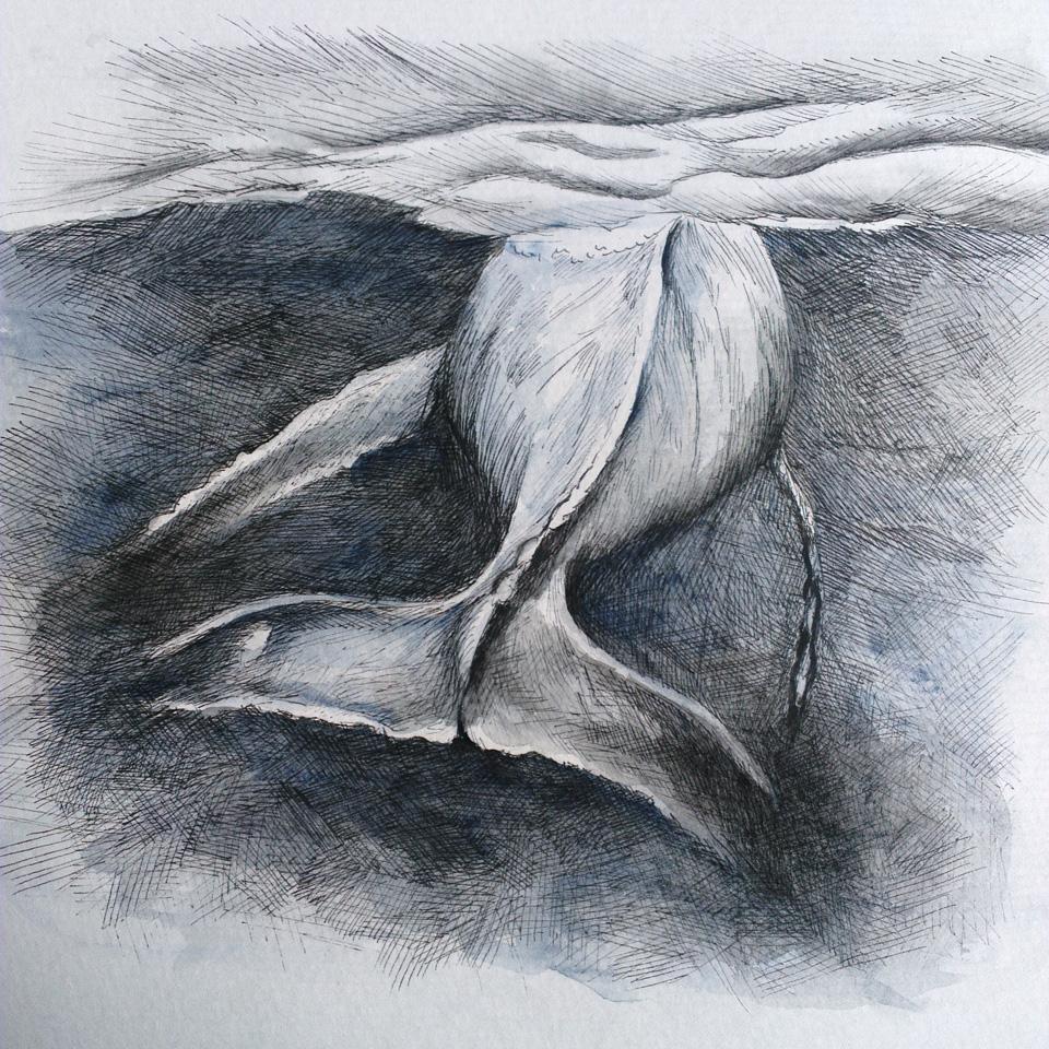 Das fertige Motiv: Ein Buckelwal verschwindet im Dunkel des Meeres.