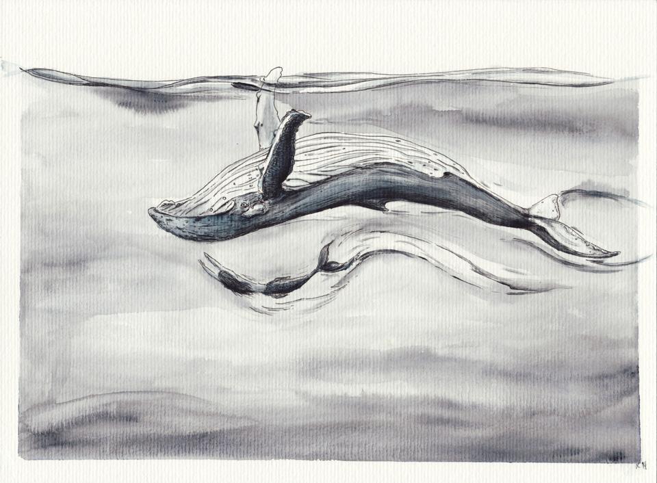 Diese zwei tanzen zusammen: Wal und Meerjungfrau.