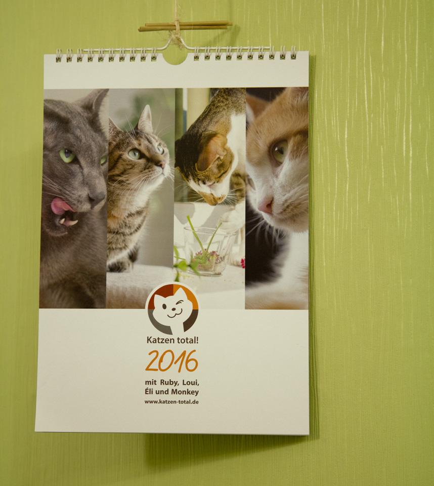 Vier Katzen zusammen in einem Kalender: Katzen-Total