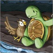 Kröt, Schuhuu, Kalender, Illustration, Eule, Owl, Schildkröte, Turtle, Leoni Pfeiffer, Mediengestaltung, Malediven, Meer, Meeresleuchten, Biolumineszens, Strand, Ozean