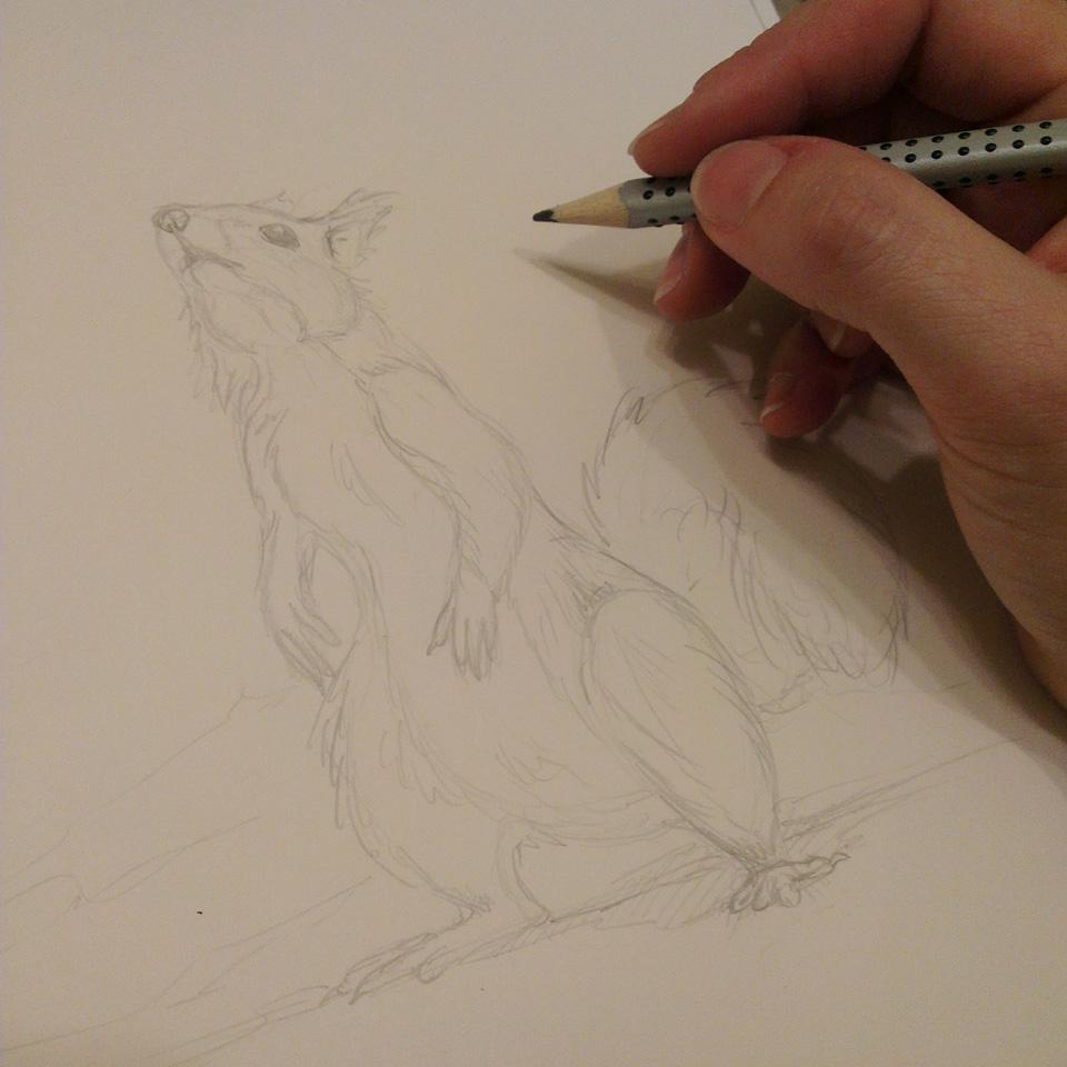 Bleistiftskizze als erster Schritt.