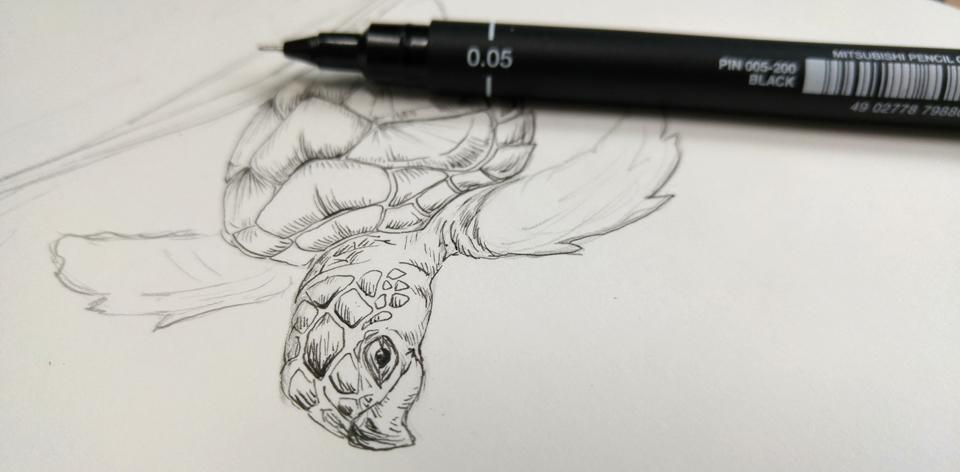 Schritt zwei: Zeichnung mit Finelinern.