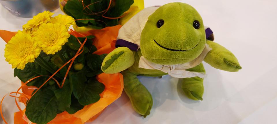 Myo – Die CNM-MTM Traveling Turtle aus den USA zu Besuch in Niedernhausen/Hessen.