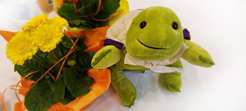 Myo, die Schildkröte der MTM-CNM Family aus den USA zu Besuch in Niedernhausen.