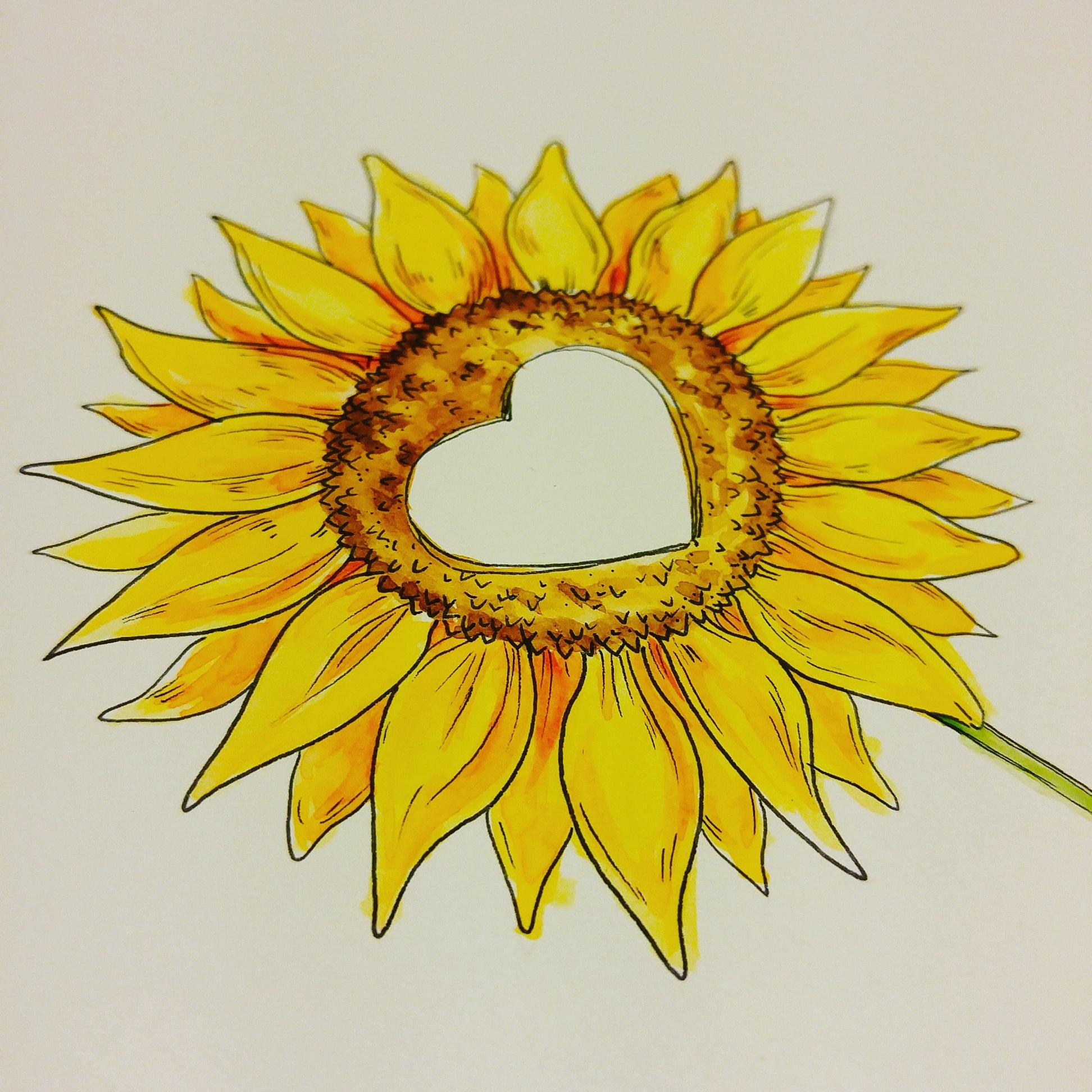Sonnenblume in strahlendem Gelb – für Emil.