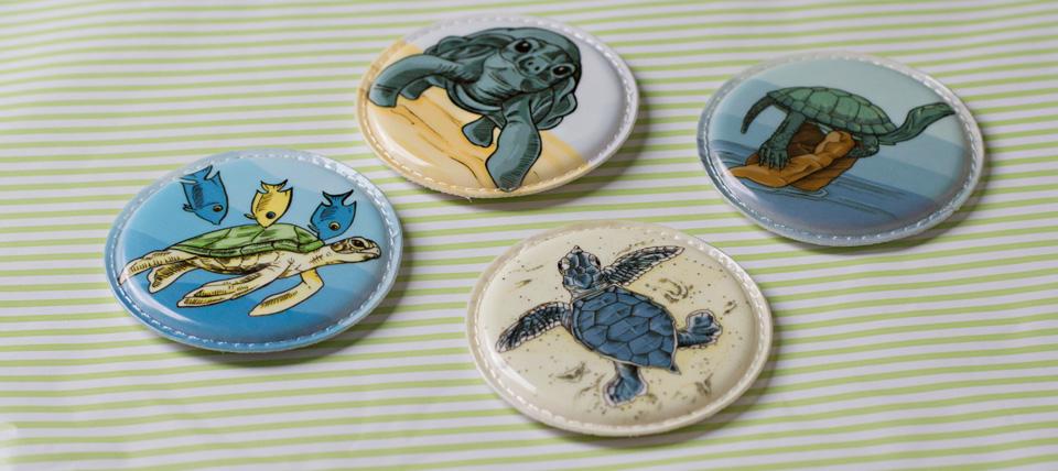 Vier verschiedene Schildkrötenarten.