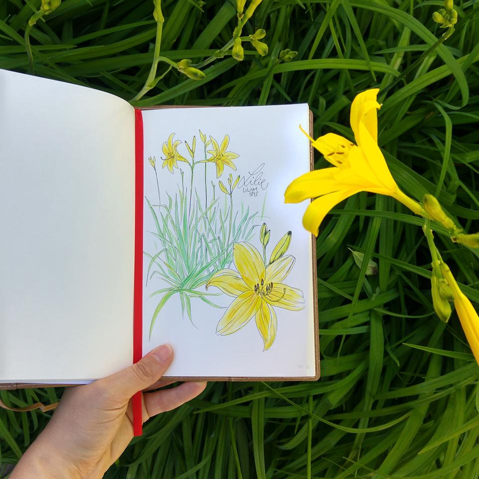 Besser als jedes Flatlay für Instagram: Bild an Blume halten.