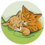 Digital Coloriert: zwei schlafende Katzen in einer Hängematte