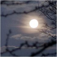Der Mond am Morgen